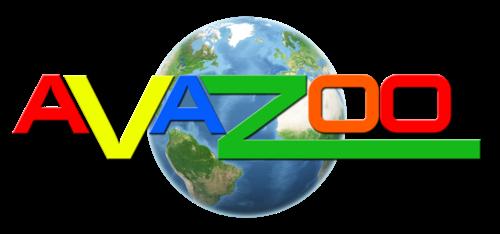 Case Study: Avazoo